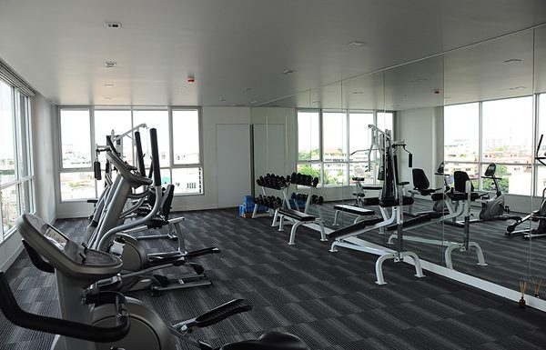 hive-taksin-gym
