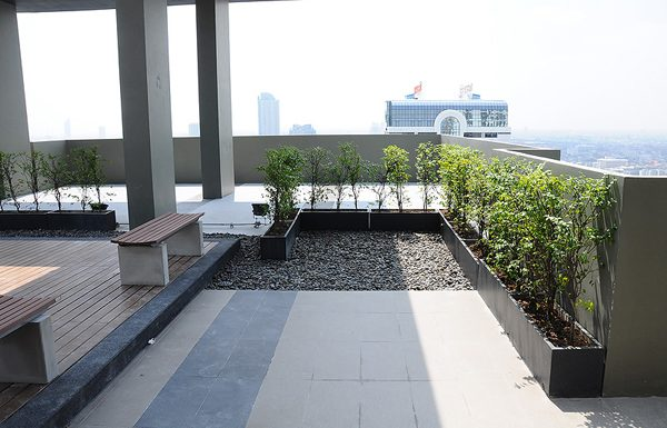 hive-taksin-view-point